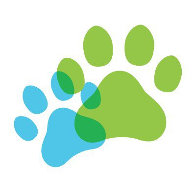 Paws Connect